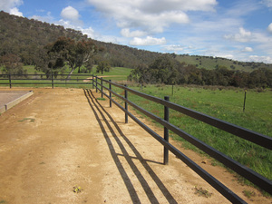 Horse post and rail fencing