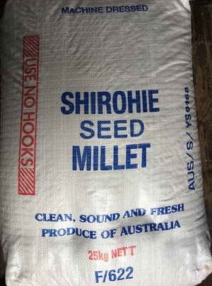 400kg of Shirohie Millet Seed in 25kg bags