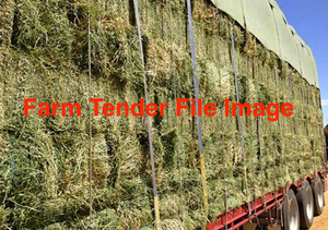 Lucerne Hay Small Squares in 21 x Barron Packs + Freight