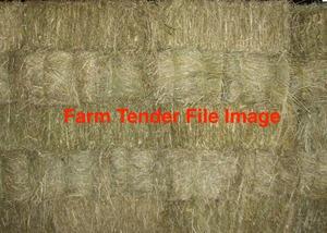 For Sale Small Squares Oaten Hay Ex Farm or Del