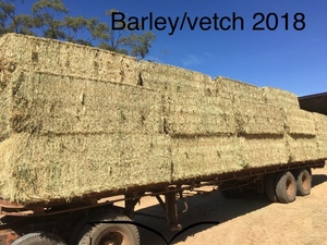Vetch & Barley Hay