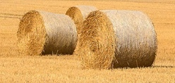 400 x Oaten Hay 5x4 Round Bales