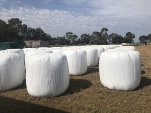 15.3%protein Lucerne, Oaten, Ryegrass Silage 580kg Round Bales with Feed Test