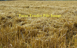 3 x B Double loads of wheat straw del Gippsland