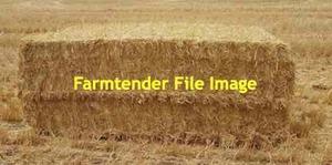 45mt Barley Straw 440kg 8x4x3 Header Trailed Bales