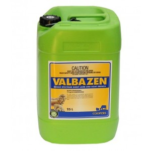 VALBAZEN 25lt  Sheep Lamb & Goat Drench