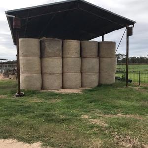 140 x Clover & Rye Grass Pasture Hay 4x4 Rolls