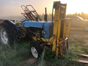 Under Auction - (A141)  - Fordson Major with Forks - 2% + GST Buyers Premium On All Lots