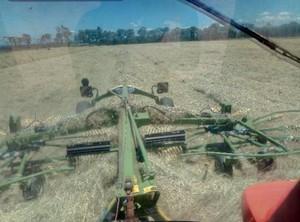 120 x Rhodes Grass 500kg 8x4x3 bales