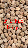 Upto 300mt Desi Chick Peas Wanted