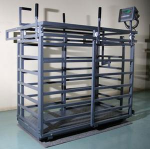 Kurraglen Sheep Weigh Crate & Load Cells