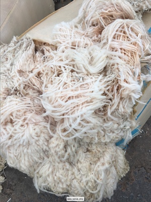 Course Wool For Sale in Bales