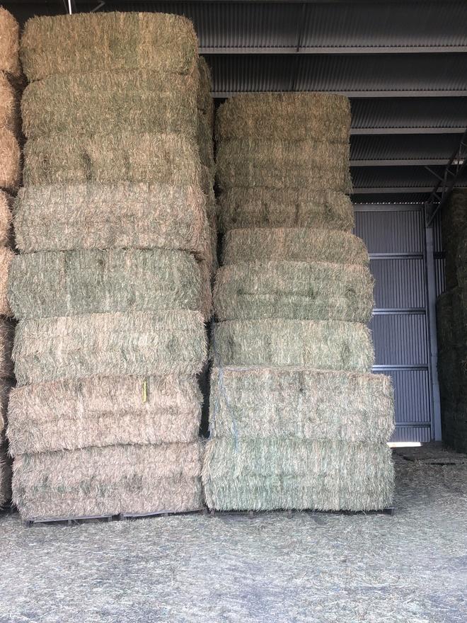 Wheaten Hay Good test
