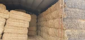 110mt Wheaten Hay 550-600kg 8x4x3