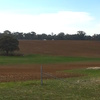 206 Acres (83.4063ha) Farming / Grazing Country Located on Carapooee - Kooreh Road Victoria