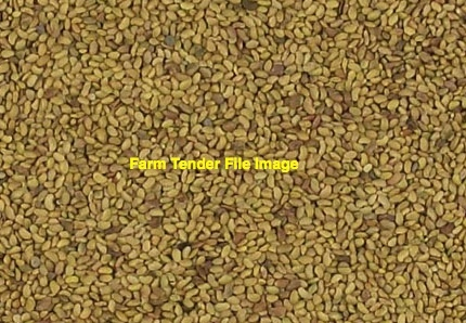 2mt Lucerne Seed (Winter Dormant)