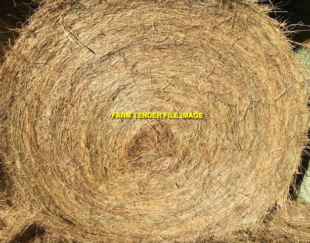 Pasture Hay Round Bales - New Season