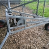 Under Auction - Vaughan Irrigator - 2% + GST Buyers Premium On All Lots