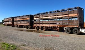 Double Deck Stock Crate Triple Road Train Unit