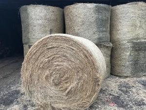 Round Bale Pasture Hay