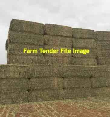 60mt Awnless Wheaten Hay 560kg 8x4x3 Bales