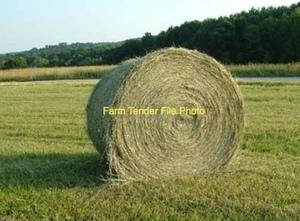 300 x Pasture Hay 5x4 Round Bales