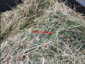 Clover Hay / 1 x load (64 bales) 8x4x3 For Sale