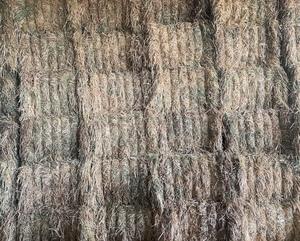 49 x Oaten Hay 8x4x3 Bales (New Season)
