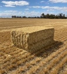 Barley Straw 8x4x3 (approx 500kg) 1000 x Bales