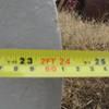 14 Inch Bates Screw Irrigation Pump