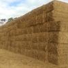 40mt Wheaten Hay 620-640kg 8x4x3 Bales
