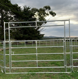 Livestock/Cattle Yard or horse yard gate only