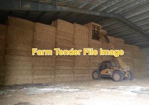 Wheaten Hay 150 mt