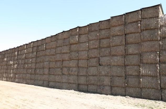 200mt Vetch Hay 600-700kg 8x4x3 Bales (New Season 20/21)