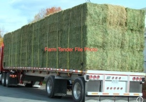 Wanted Rye and Clover Hay in Big Squares