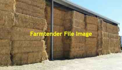 90mt Wheaten Hay 500-550kg 8x4x3 Bales