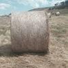 Rye & Clover Hay 5x4 Round Bales (New Season)